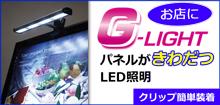 G-Lightはこちら